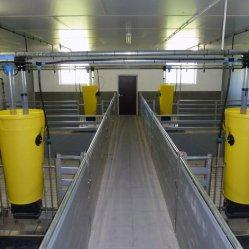 Automaten für die Mast
